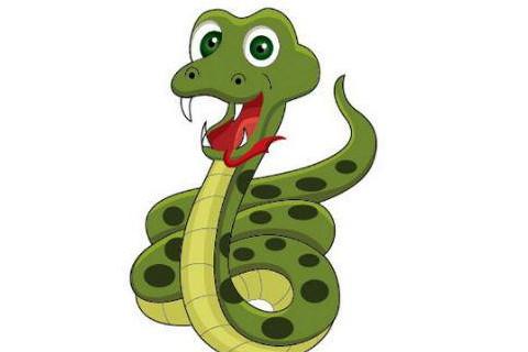 属蛇的人哪个月出生最好